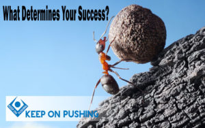 What-Determines-Your-Success